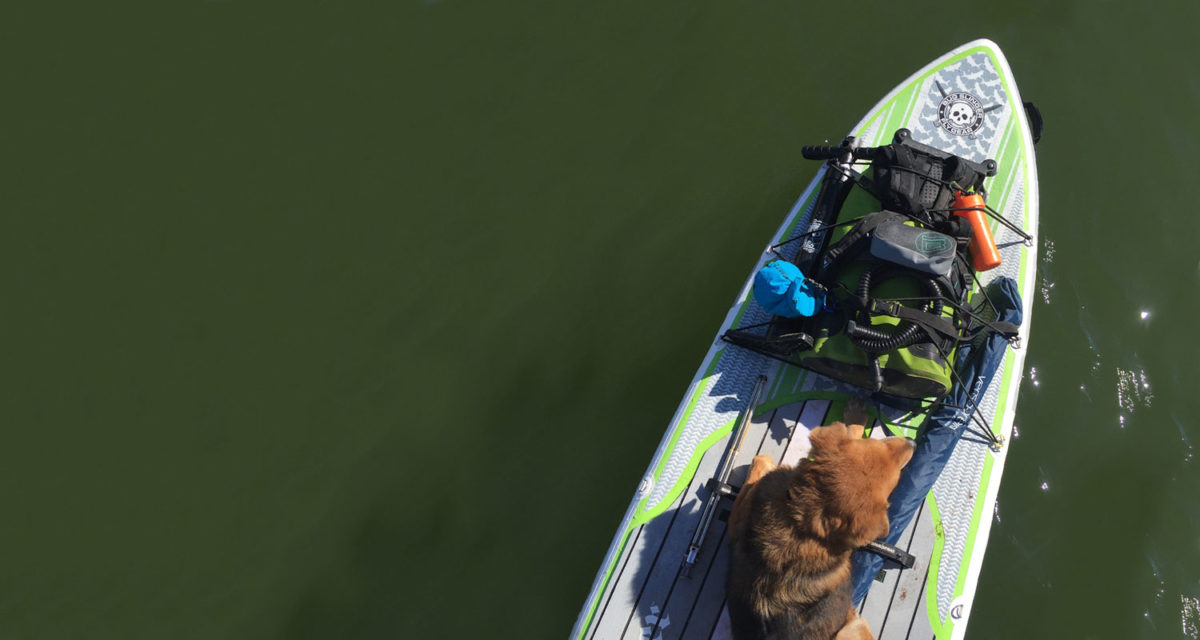 4XPEDITION SUP with your Pup