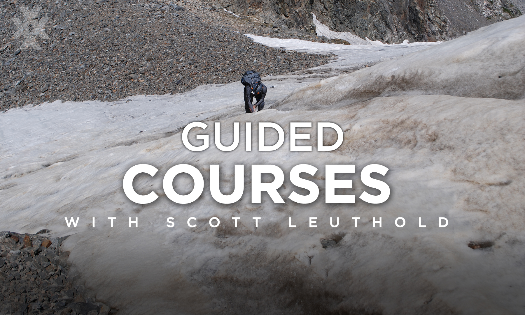 Guided Field Courses with Scott Leuthold